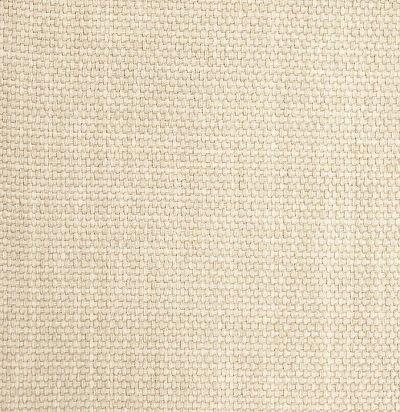 5213333 Mauritius Ткань из Бельгии Dizz Design