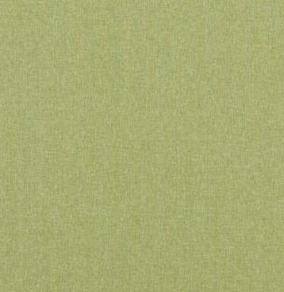 PF50420-735 Carnival Plain Grass Ткань из Англии GP&JBaker