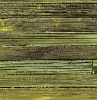 RM90362 Un nid de verdure Франнцузские обои Elitis