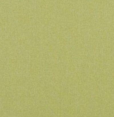 PF50420-755 Carnival Plain Lime Английская ткань GP&JBaker