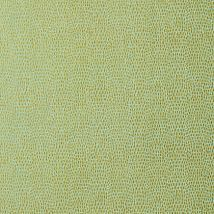 Фото: Обои Thibaut Texture Resource 5 T57156 Chameleon Patina- Ампир Декор