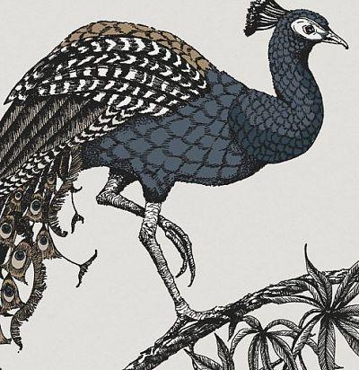 обои рельефные с птицами 10885 Fardis