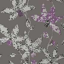 Фото: Обои Anna French Seraphina AT6047 Spotted orchid Silver on Charcoal- Ампир Декор