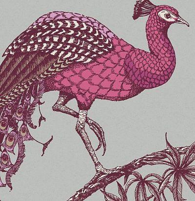 обои с розовыми павлинами 10888 Fardis